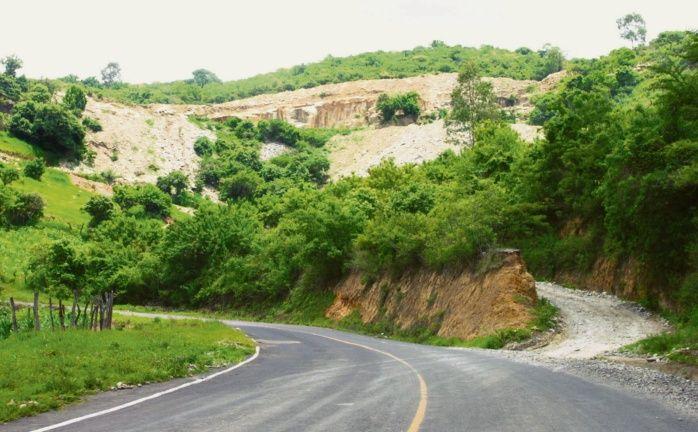 Tala ilegal de bosques en Sayula